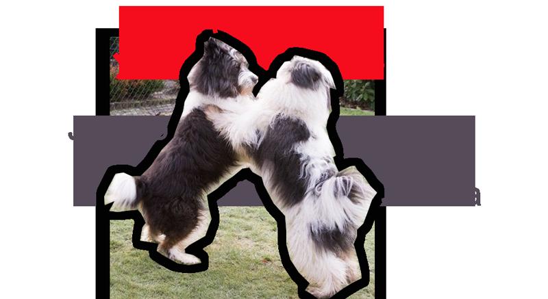 justmarried2