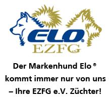 LOGO_elooffiziell